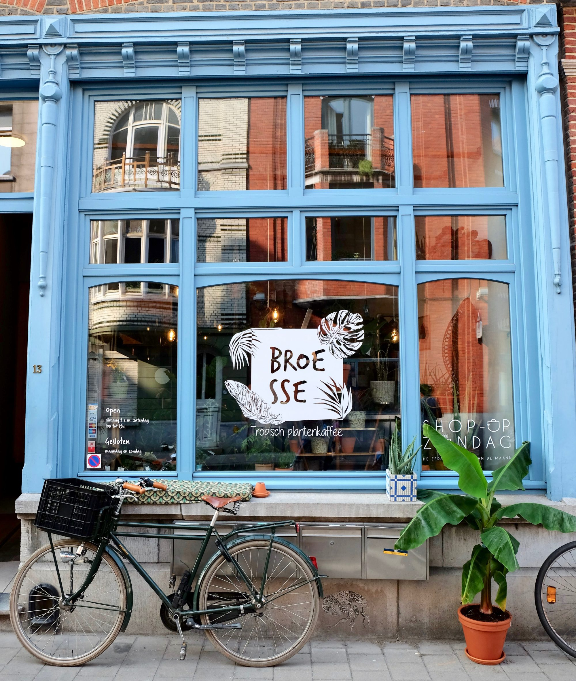 Broesse - Tropische Plantenwinkel en kaffee